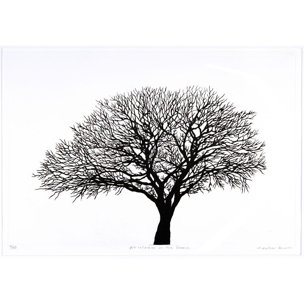 trees-big-2