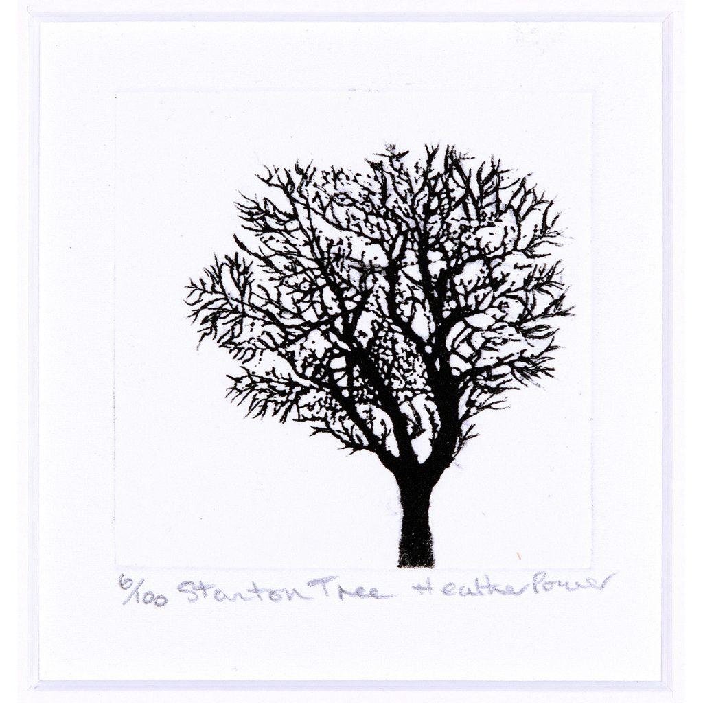 trees-sm-sq-3