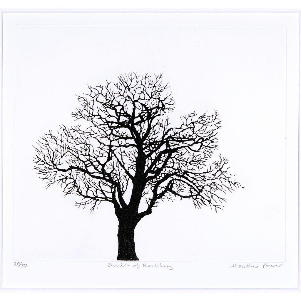 trees-med-2