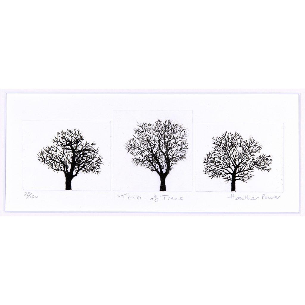 trees-trio
